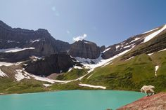 Getting the perfect backcountry trip in Glacier National Park can be frustrating, but it shouldn't be. You can always get an amazing backpacking trip in Glacier. For help planning, check out the information provided here.
