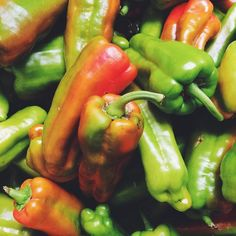 Come to St. Mark's Greenmarket in #Manhattan and pick a peck of #peppers! Open Tues 8AM-6PM #farmersmarketnyc