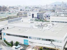 ประชุมวันแรกเริ่มต้นสวยงามที่โรงงานญี่ปุ่น   abbydabby.co.th