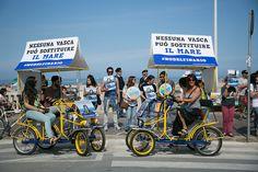 Sabato 9 maggio 2015 -  Abbiamo manifestato ancora una volta per chiedere la chiusura del Delfinario di Rimini che, dopo il sequestro di quattro delfini e le attuali vicende giudiziarie, dallo scorso anno esibisce tre leoni marini. #NODELFINARIO #lalorocasaèilmare