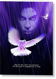 When Doves Fly Greeting Card for Sale by Mal Bray. Our premium-stock greeting cards are x in size and can be personalized with a custom message on the inside of the card. All cards are available for worldwide shipping and include a money-back guarantee. Prince Meme, Prince Quotes, Great Artists, Music Artists, Prince Images, Prince Purple Rain, Baby Prince, Love Wall Art, Roger Nelson