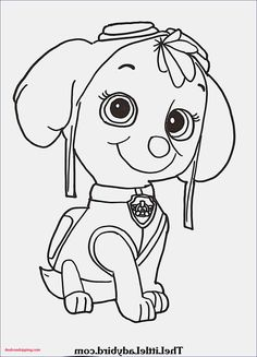 78 Luxury Photography Of Shimmer And Shine Coloring Sheets