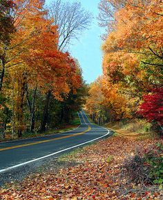 Fall was always my favorite season... especially on back roads like these in Kentucky