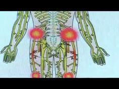 PHYSICAL THERAPY DOCTOR TREATMENT ALLENDALE FRANKLIN LAKES MAHWAH BERGEN...