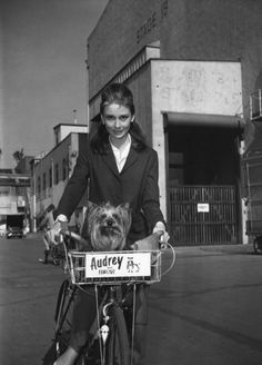 Audrey Hepburn and her dog Famous take a break from Breakfast at Tiffany's