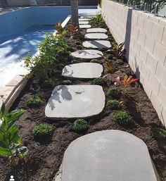 luka Bluestone Stepping Stones have a sawn top surface, with an organic natural edge. These great new stepping stones have a size of approximately 800-1000mm and are 30mm thick. sales@aussietecture.com.au P : 02 8378 0730 Garden Steps, Garden Edging, Stone Landscaping, Pool Coping, Garden Stepping Stones, Stone Supplier, Natural Stones, Landscape Design, Organic