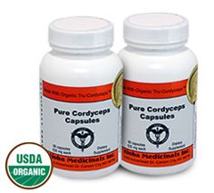 Cordyceps is a rare and powerful medicinal mushroom. It provides so many proven health benefits, wholesale prices for it has reached $35,000 per pound!