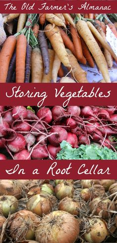 Root Cellars are a classic solution to storing your root vegetable bounty! read more at The Old Farmer's Almanac.