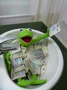 Trendy Ideas for funny memes kermit miss piggy Sapo Kermit, Stupid Memes, Funny Memes, Meme Rindo, Tea Meme, Reaction Pictures, Funny Pictures, Les Muppets, Make Money Online