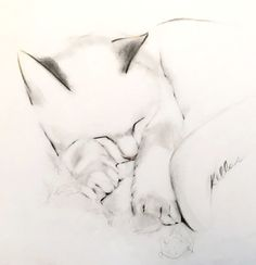 Minimalist and elegant drawings of cats and birds by artist, Kellas Campbell. Minimalist and elegant drawings of cats and birds by artist, Kellas Campbell. Cat Drawing, Drawing Sketches, Painting & Drawing, Drawing Tips, Arte Tribal, Minimalist Drawing, Cat Sketch, Graphite Drawings, Charcoal Drawings