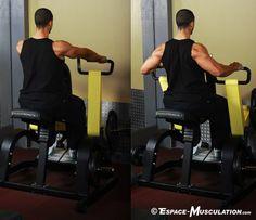 Rowing assis pour les deltoïdes postérieurs (pronation). #musculation #delts #exercice #bodybuilding #workout #fitness #exercise