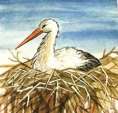 Term.ismeret- állatok - Kiss Virág - Picasa Web Albums Story Prompts, Birds, Seasons, Album, Spring, Illustration, Art, Picasa, Patterns
