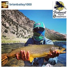 Nice big brown trout! @Brian Flanagan Bailey