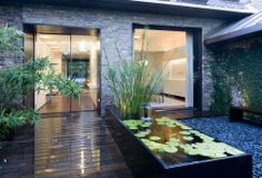Entrance garden at the Peninsula residence in Austin, Texas.  Designed by Texas firm Bercy Chen Studio.