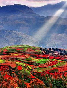 Luoxiagou, Dongchuan in #China. A gorgeous array of #farm land lit under the afternoon sun.