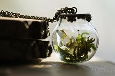 Crystal terrarium necklace miniature by RubyRobinBoutique on Etsy