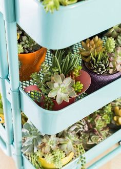 DIY Plant Decor 6 Unusual IKEA Products to Use as Planters is part of Diy plants decor What& better than a new fabulous modern planter to spruce up a corner of your home& indoors or outdoors - Ikea Raskog, Raskog Cart, Vertical Garden Planters, Balcony Garden, Indoor Garden, Indoor Plants, Herb Garden, Small Plants, Potted Plants