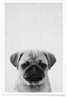 Print 44 als Premium Poster von Lila x Lola | JUNIQE