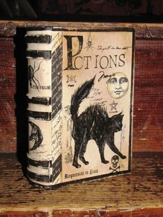 Behold a black cat on a Potions book:)