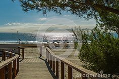Download Walking The Road To The Beach Royalty Free Stock Photos for free or as low as 7.27 руб.. New users enjoy 60% OFF. 21,050,408 high-resolution stock photos and vector illustrations. Image: 36732628