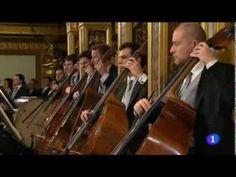 """""""El Danubio Azul"""" de Johan Strauss - Orquesta Filarmónica de Viena 2014 - YouTube"""