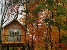 Treehouse Vacations, Fall Vacations, Treehouse Cabins, Treehouses, Adult Tree House, Glamping California, Airbnb Rentals, Vacation Rentals, Diy Halloween Treats