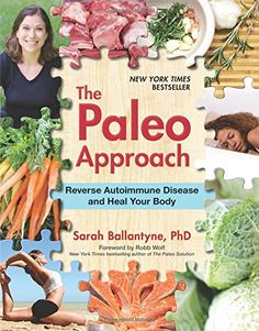 Paleo Approach, The (Paperback)