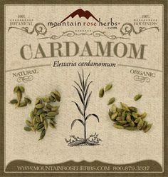 Whisperings throughout history rumor that Cleopatra found the scent of cardamom so alluring that she made incense from the seeds to perfume her palace when Marc Antony came to visit.