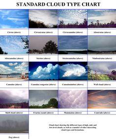 2a1c5a2251903f47a61c4502afe98b72.jpg 1,118×1,348 pixels