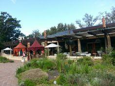 Moyo Kirstenbosch Botanical Gardens