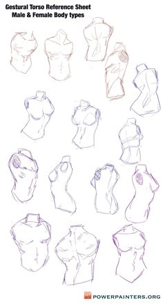 Hey Power Painters Here are some torso sketches to use as a reference Its really helpful to practice gestural anatomical bits REMEMBER The core is the largest mass of our. Body Reference Drawing, Human Figure Drawing, Drawing Reference Poses, Anatomy Reference, Drawing Practice, Anatomy Sketches, Anime Drawings Sketches, Anatomy Drawing, Anatomy Art