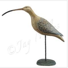 One of my latest curlews:  Long-billed curlew shorebird decoy.  (Sold)  more by Jay Miles at:   www.facebook.com/kickingbullgallery?ref=hl Commission always welcomed.