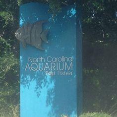 NC Aquarium Fort Fisher #travel #WilmingtoNCoast