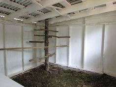 """Incorporate into coop design-Spiral Roost Access & ROOSTS using natural logs/branches that conform to the chickens feet. Also, a natural log """"swing"""" in the run."""