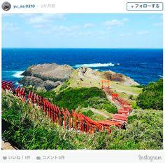「日本の美しい場所31選」にも選ばれた神社 お賽銭が世界で一番入れづらいと話題に・・・ | TABI LABO