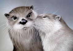 Otters Kissing print matted and framed by Oneta by 2ndMoon on Etsy, $25.00