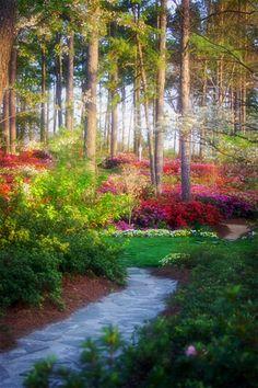 azalea gardens, Raleigh, NC