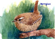 ACEO Limited Edition 2/25 - A wren in summer wood - Art print of an ACEO original watercolor painting by Anna Lee