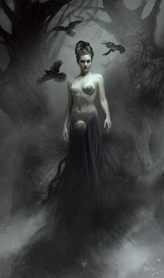 The Mist and the Raven - Bastien Lecouffe Deharme…