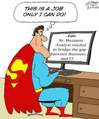 Analyst Jokes  Humor  Cartoon The Business Analyst Must Ensure