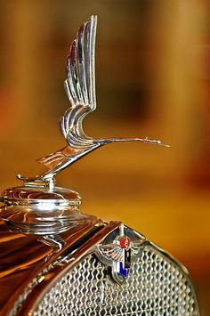 "..._1931 LaSalle ""Heron"" Hood Ornament"