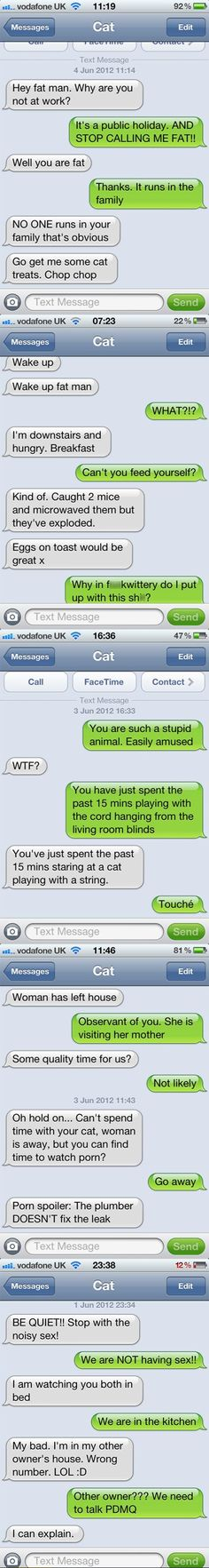 Texting With My Cat