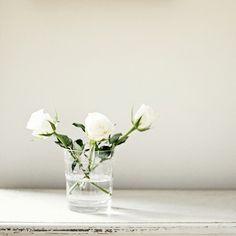 Un felice fine settimana ♥  white roses