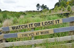 Watch it or lose it - thieves at work / kewl@flickr | #readytocopy