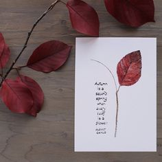 "I was so happy when I found this beautiful quote by Albert Camus: ""Autumn is a second spring when every leaf is a flower"". Maybe that's why I love autumn so much. I painted a leaf from my backyard and (leaf art) Schrift Design, Happy Sunday Quotes, Leaf Art, Fall Diy, Bullet Journal Inspiration, Art Journal Pages, Art Sketchbook, Leaf Prints, Fall Crafts"