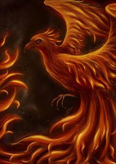 Phoenix by The-demons-heart on DeviantArt