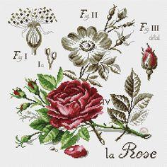 Foto Cross Stitch Love, Cross Stitch Samplers, Cross Stitch Flowers, Cross Stitch Designs, Cross Stitching, Cross Stitch Patterns, Rose Bouquet, Blackwork, Crochet