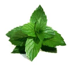 HYPERPIGMENTATION A person can mix mint leaves, cucumber and egg white to prepare a mask and apply it on the affected area for 15 to 20 minutes multiple times in a week to reduce the patches.