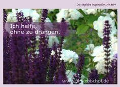 Die tägliche Inspiration No.309 www.inspirationenblog.wordpress.com www.ulrikebischof.de