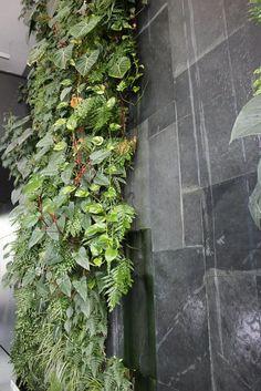 Muchas ideas de jardines verticales. En el ejemplo, jardin en el baño